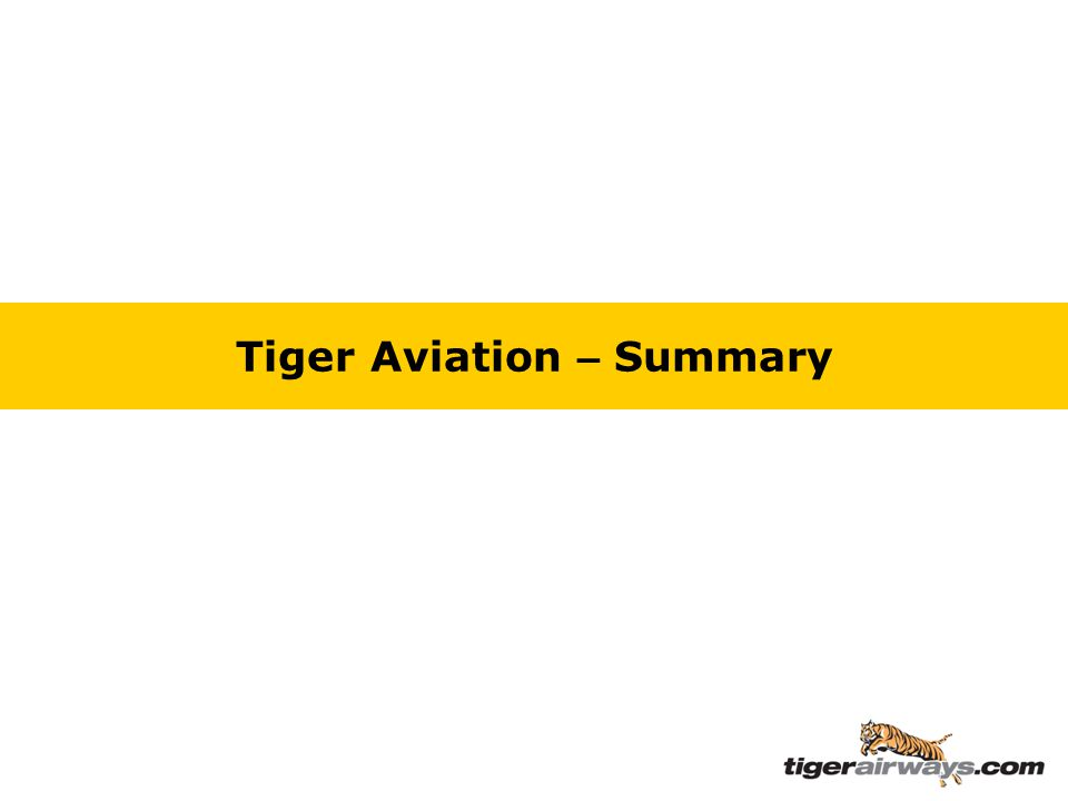 Tiger Aviation – Summary