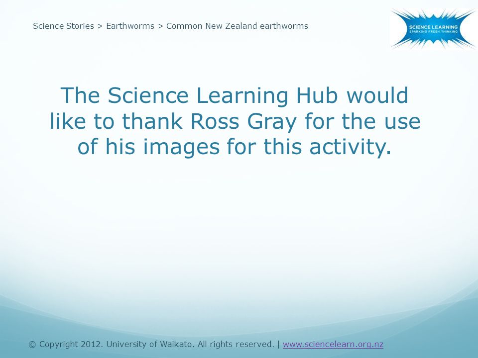 The Science Learning Hub would like to thank Ross Gray for the use of his images for this activity.