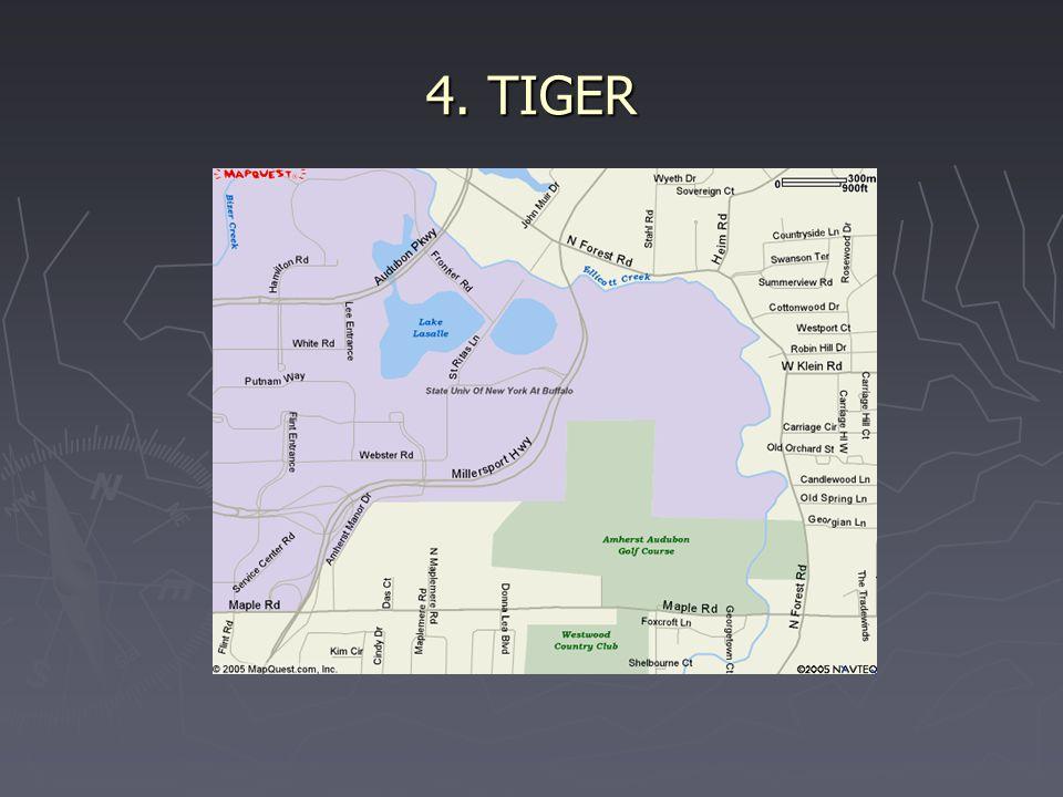 4. TIGER