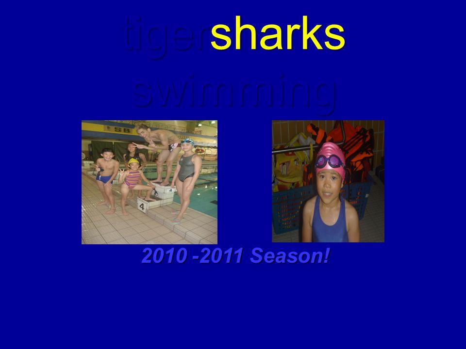 tigersharks swimming 2010 -2011 Season!