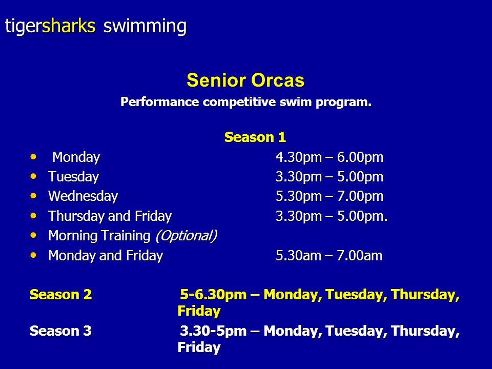 tigersharks swimming Senior Orcas Performance competitive swim program.