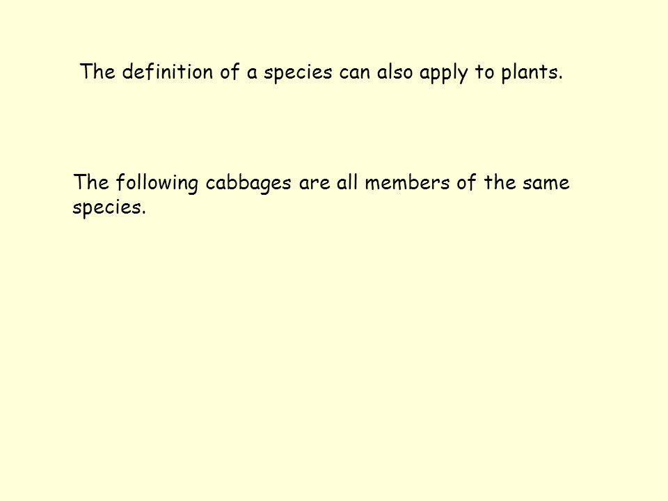 The definition of a species can also apply to plants.
