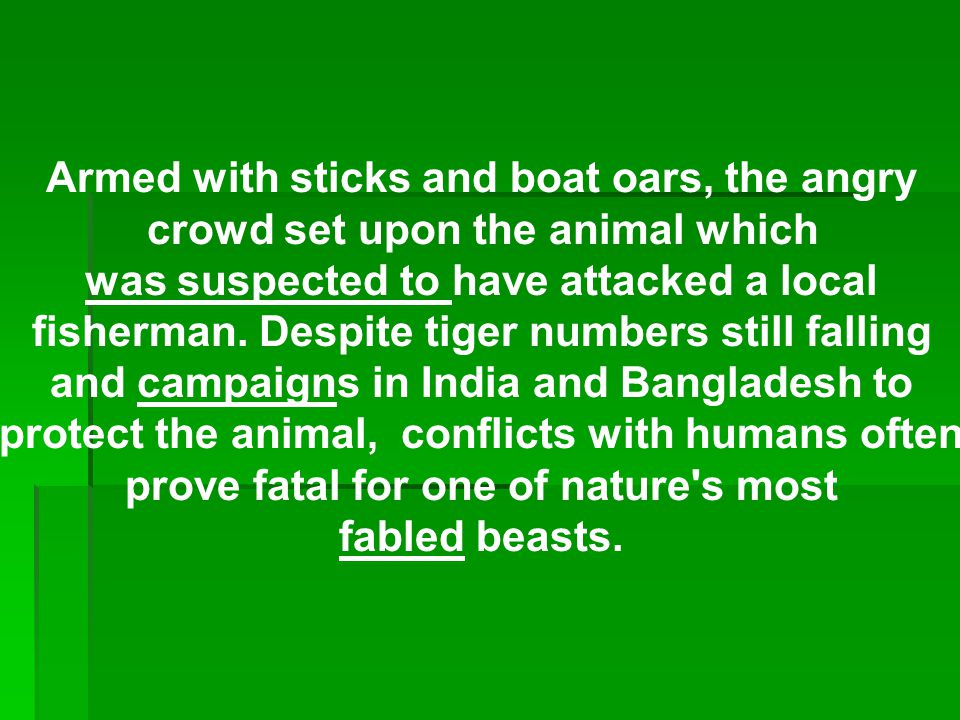 Armed with sticks and boat oars, the angry crowd set upon the animal which was suspected to have attacked a local fisherman.