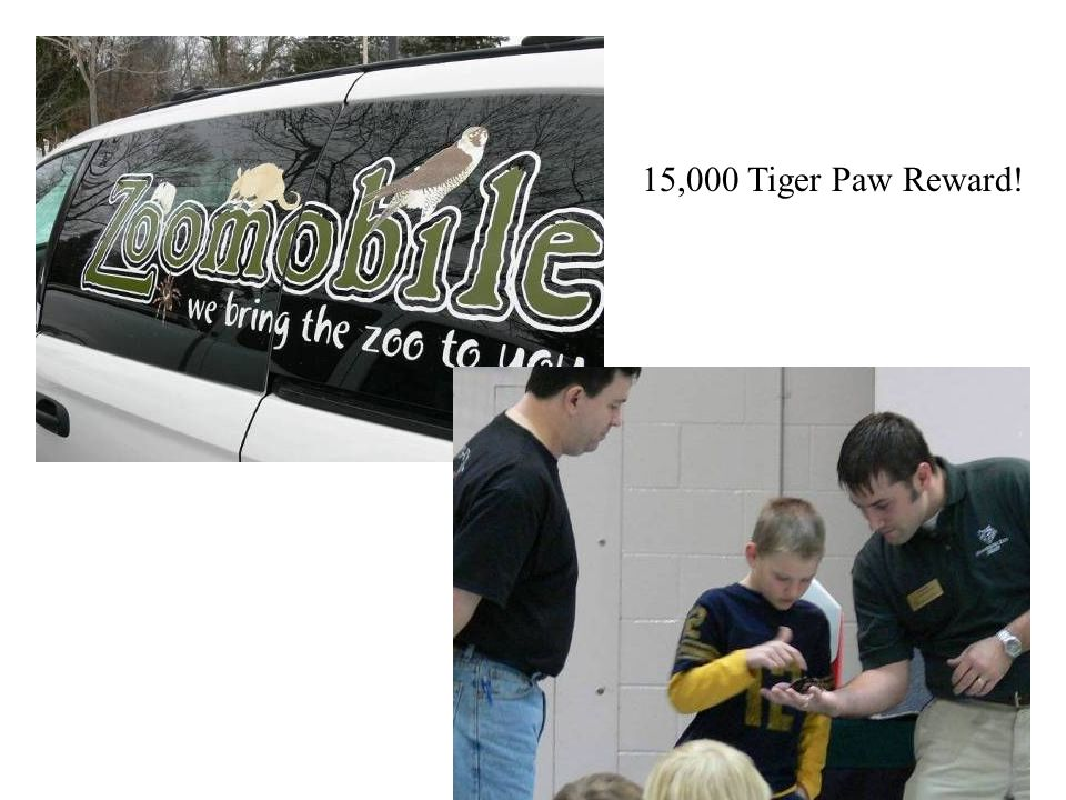 15,000 Tiger Paw Reward!