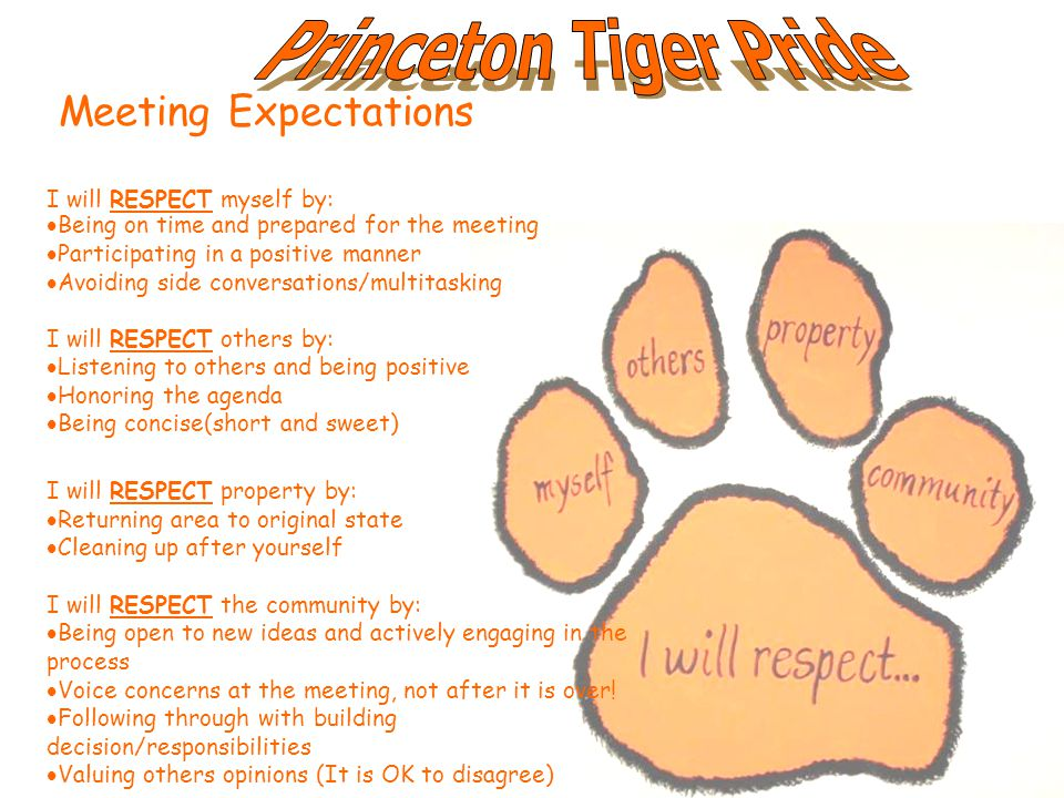 Meeting Expectations I will RESPECT myself by:  Being on time and prepared for the meeting  Participating in a positive manner  Avoiding side conversations/multitasking I will RESPECT others by:  Listening to others and being positive  Honoring the agenda  Being concise(short and sweet) I will RESPECT property by:  Returning area to original state  Cleaning up after yourself I will RESPECT the community by:  Being open to new ideas and actively engaging in the process  Voice concerns at the meeting, not after it is over.