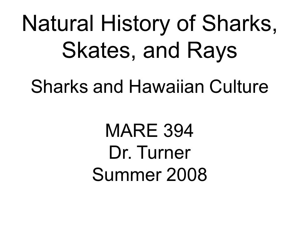 Sharks & Hawaiian Culture Knowledge of shark names used by ancient Hawaiians Found extensively in legend, place-names folklore, customs Gods & Demi-gods 'aumakua