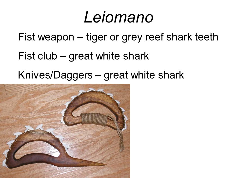 Leiomano Fist weapon – tiger or grey reef shark teeth Fist club – great white shark Knives/Daggers – great white shark