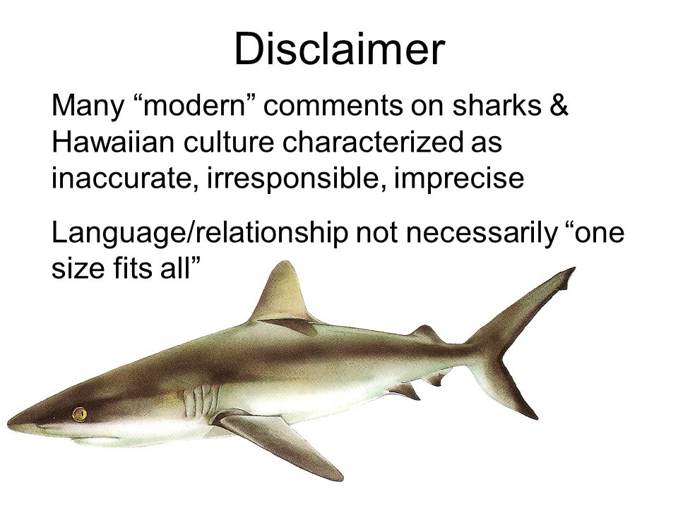 Disclaimer Many modern comments on sharks & Hawaiian culture characterized as inaccurate, irresponsible, imprecise Language/relationship not necessarily one size fits all