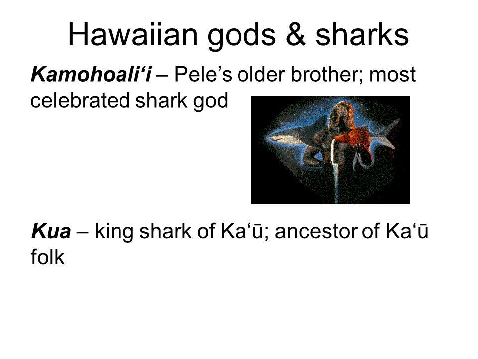 Hawaiian gods & sharks Kamohoali'i – Pele's older brother; most celebrated shark god Kua – king shark of Ka'ū; ancestor of Ka'ū folk