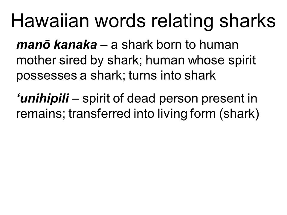 Hawaiian words relating sharks manō kanaka – a shark born to human mother sired by shark; human whose spirit possesses a shark; turns into shark 'unihipili – spirit of dead person present in remains; transferred into living form (shark)