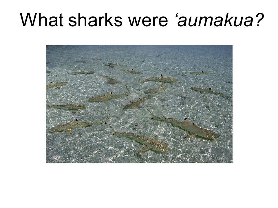 What sharks were 'aumakua