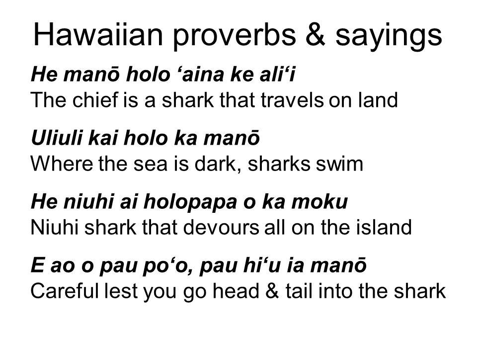 Hawaiian proverbs & sayings He manō holo 'aina ke ali'i The chief is a shark that travels on land Uliuli kai holo ka manō Where the sea is dark, sharks swim He niuhi ai holopapa o ka moku Niuhi shark that devours all on the island E ao o pau po'o, pau hi'u ia manō Careful lest you go head & tail into the shark