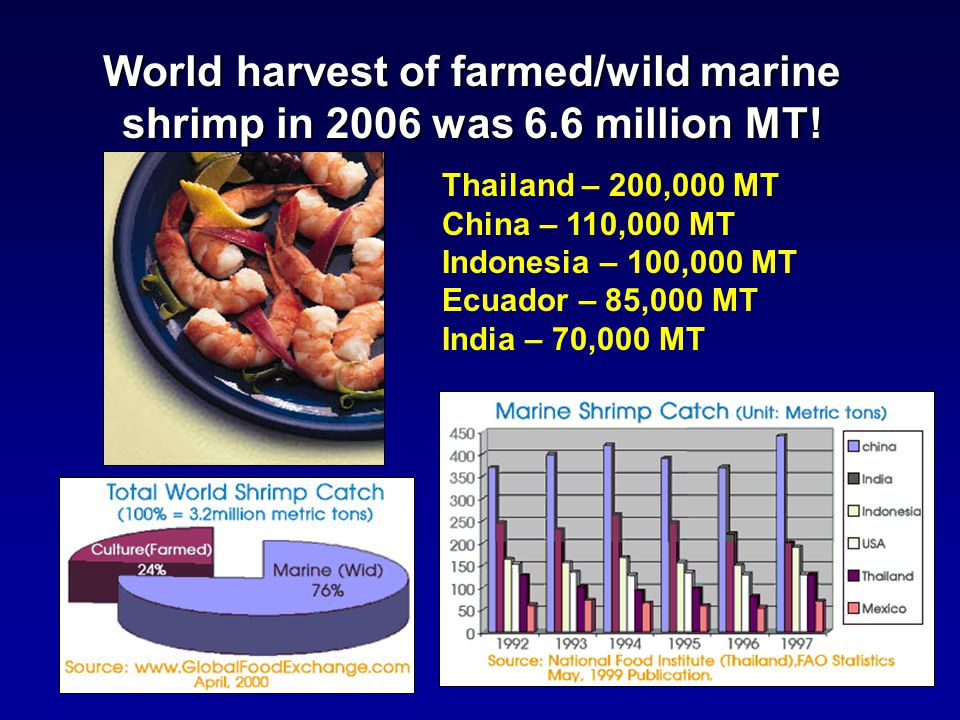 Shrimp Species Freshwater Prawns (Macrobrachium spp.)Freshwater Prawns (Macrobrachium spp.) –World production of farmed prawns has risen to around 200,000 metric tons, worth about a billion dollars, most of it from Bangladesh and China.