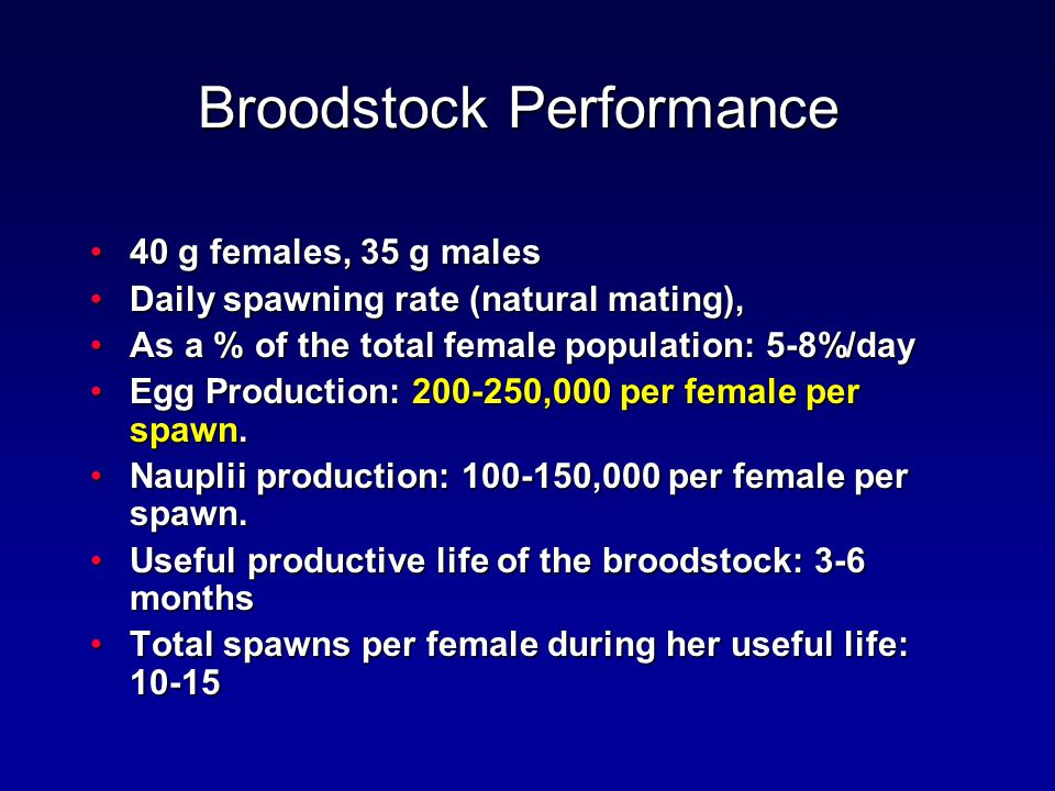 Broodstock Performance 40 g females, 35 g males40 g females, 35 g males Daily spawning rate (natural mating),Daily spawning rate (natural mating), As a % of the total female population: 5-8%/dayAs a % of the total female population: 5-8%/day Egg Production: 200-250,000 per female per spawn.Egg Production: 200-250,000 per female per spawn.