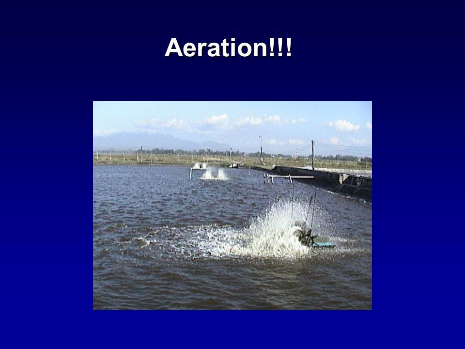 Aeration!!!