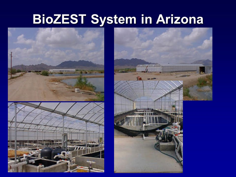 BioZEST System in Arizona