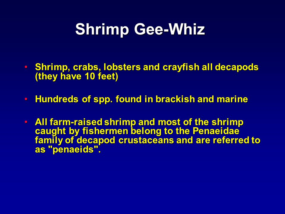 3,081 mmt 1,087 mmt The harvest of marine shrimp by wild capture and aquaculture in 2000