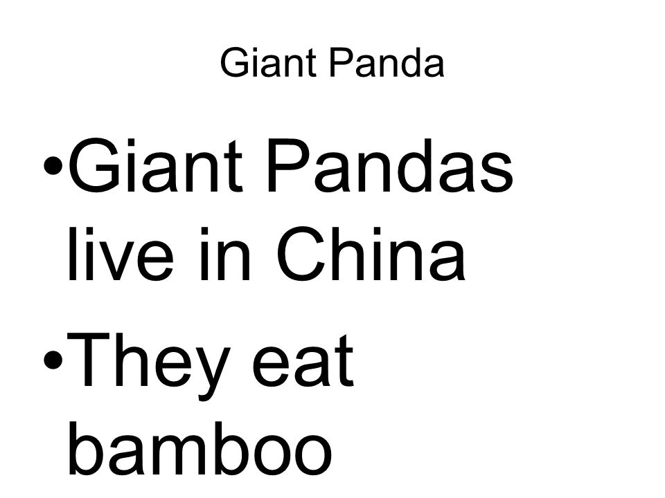 Giant Panda Giant Pandas live in China They eat bamboo
