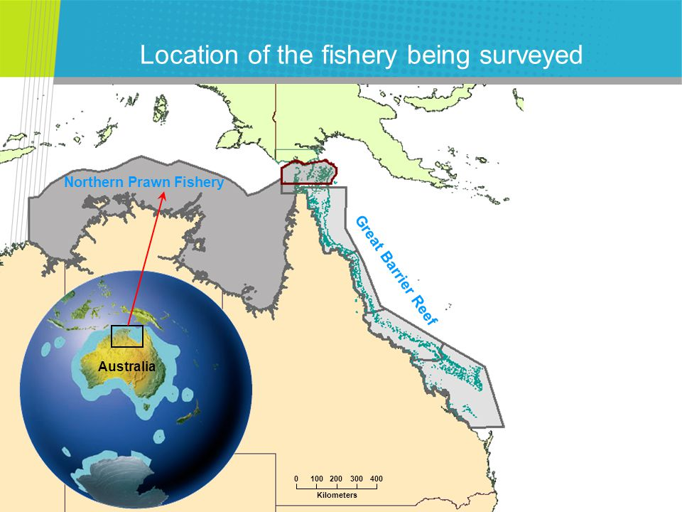 CSIRO Mathematical and Information Sciences Introduction to the Northern Prawn Fishery (NPF) Typical annual earnings > $100 million ~40 yrs fishing, most in Gulf of Carpentaria Measures taken to conserve multi-species stocks: (an input-controlled fishery up till now, i.e.