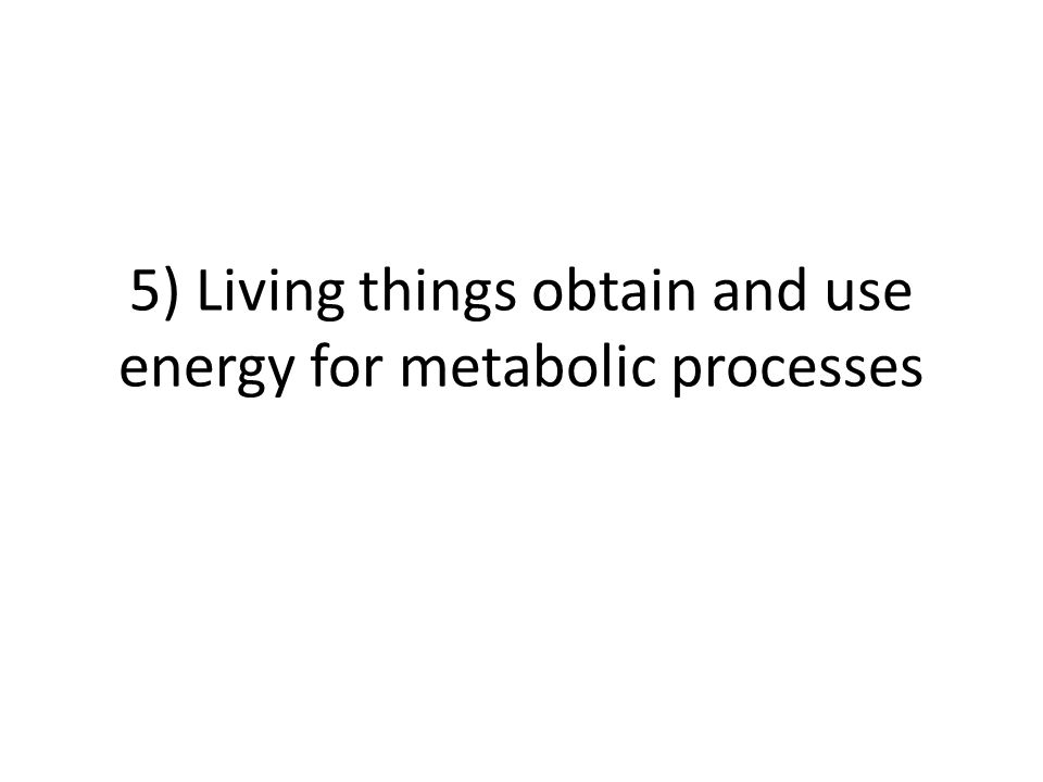 5) Living things obtain and use energy for metabolic processes