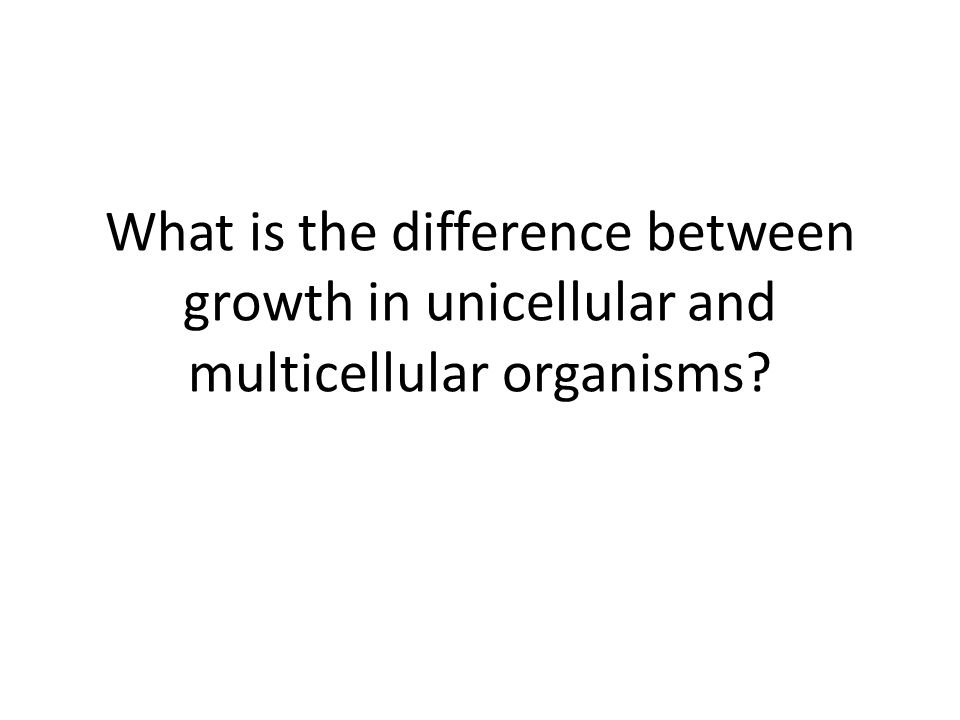 What is the difference between growth in unicellular and multicellular organisms
