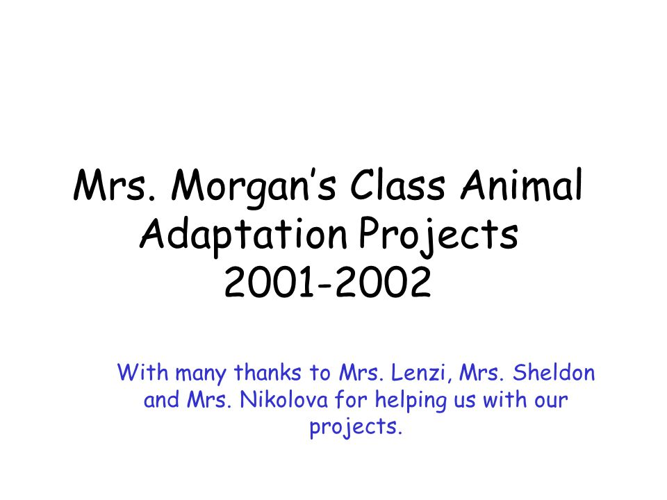 Mrs. Morgan's Class Animal Adaptation Projects 2001-2002 With many thanks to Mrs. Lenzi, Mrs. Sheldon and Mrs. Nikolova for helping us with our projec