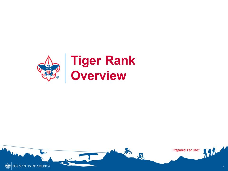 1 Tiger Rank Overview