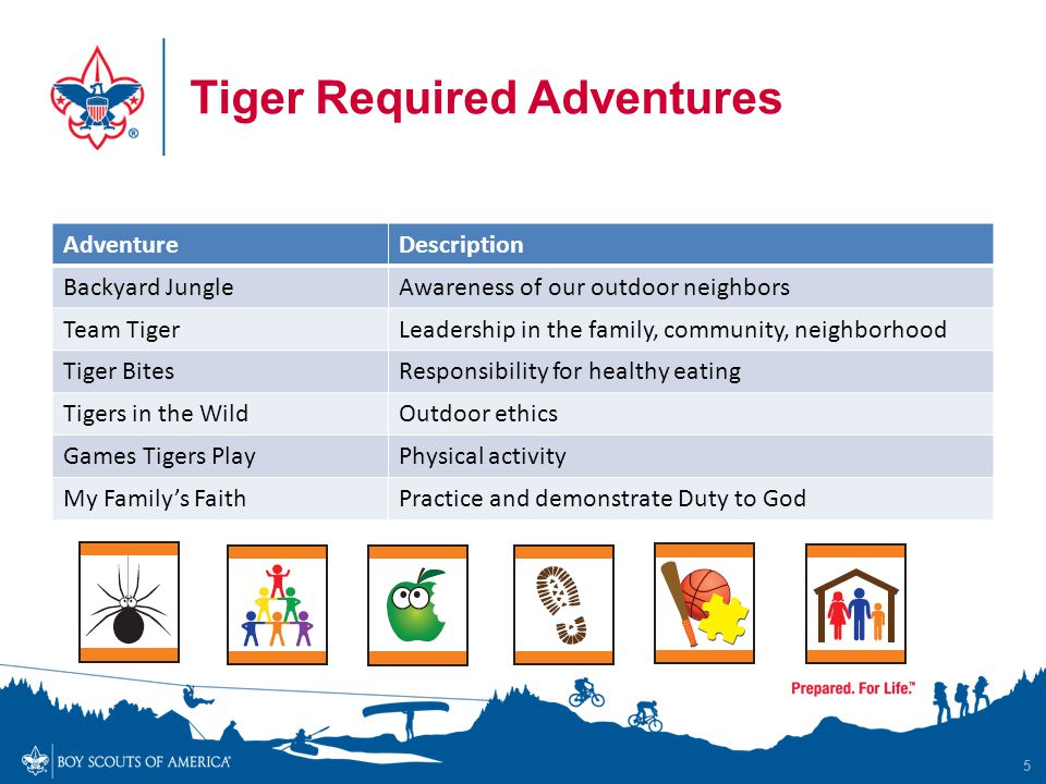Tiger Required Adventures 5 AdventureDescription Backyard JungleAwareness of our outdoor neighbors Team TigerLeadership in the family, community, neig