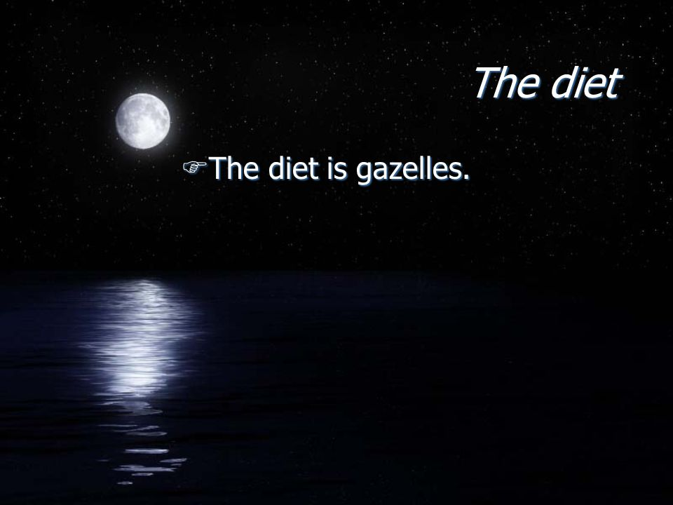 The diet FThe diet is gazelles.
