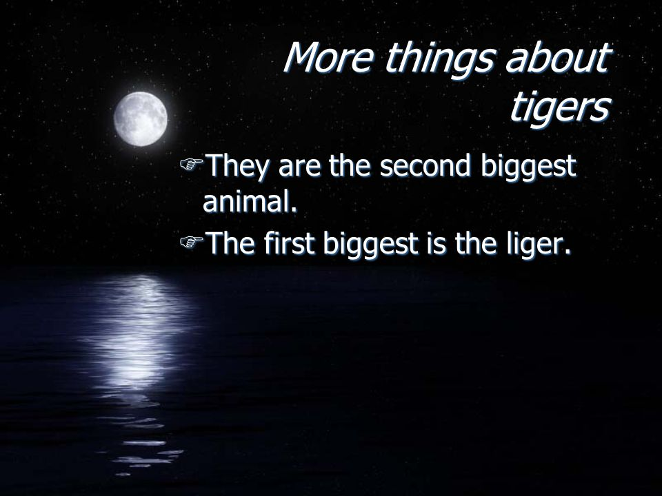 More AGAIN.FA liger is a cat when a lion and a tiger mate.