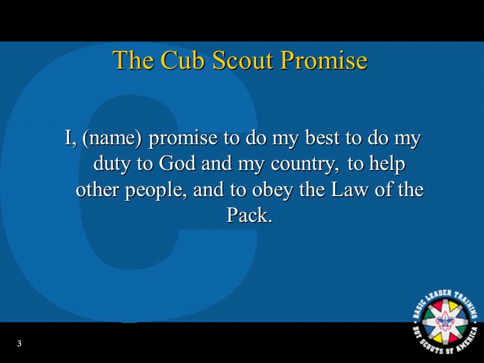 13 Adult Cub Scout Leader Uniforms