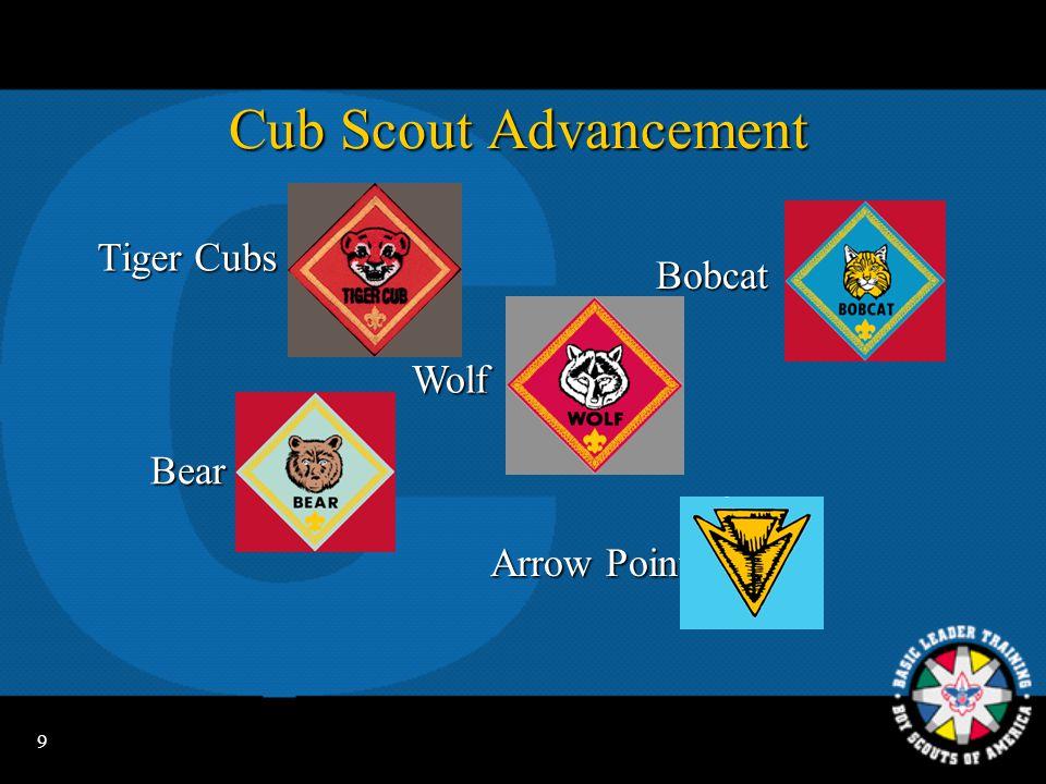 9 Cub Scout Advancement Bobcat Bear ArrowPoints Arrow Points Wolf Tiger Cubs