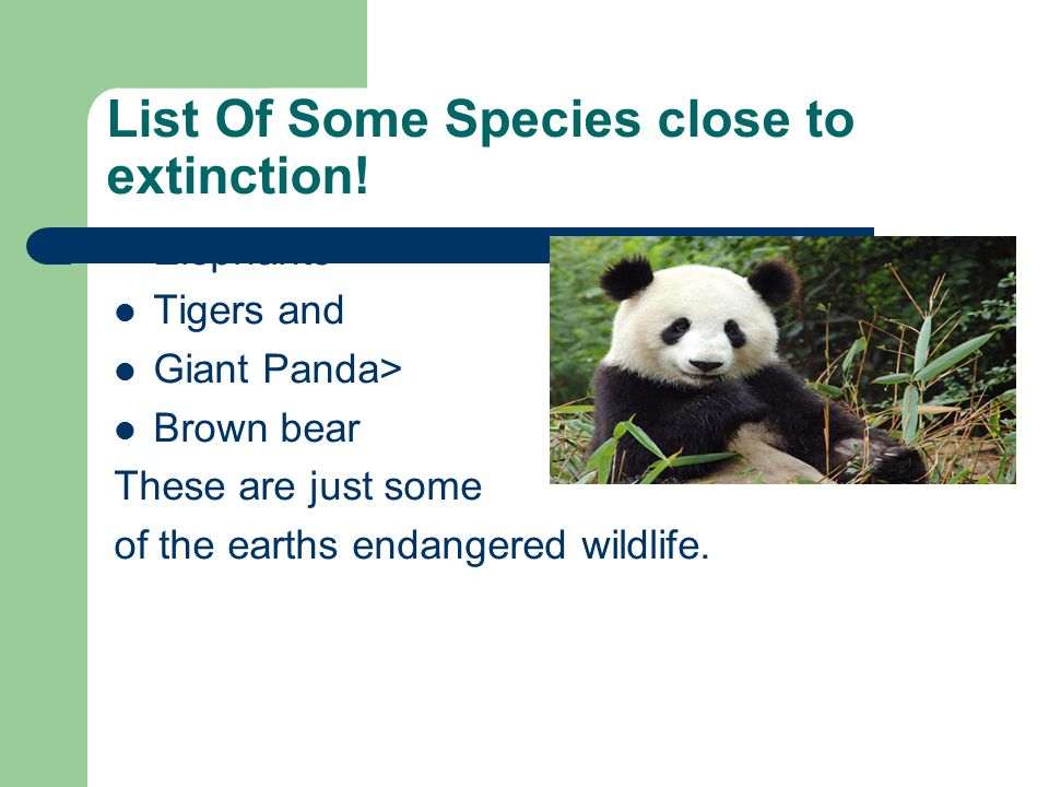 List Of Some Species close to extinction.
