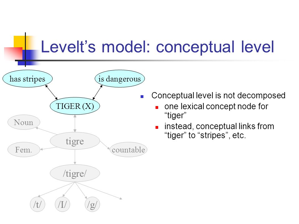 has stripesis dangerous TIGER (X) Levelt's model: conceptual level Conceptual level is not decomposed one lexical concept node for tiger instead, conceptual links from tiger to stripes , etc.