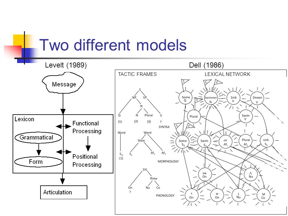Two different models TACTIC FRAMESLEXICAL NETWORK Dell (1986)Levelt (1989)