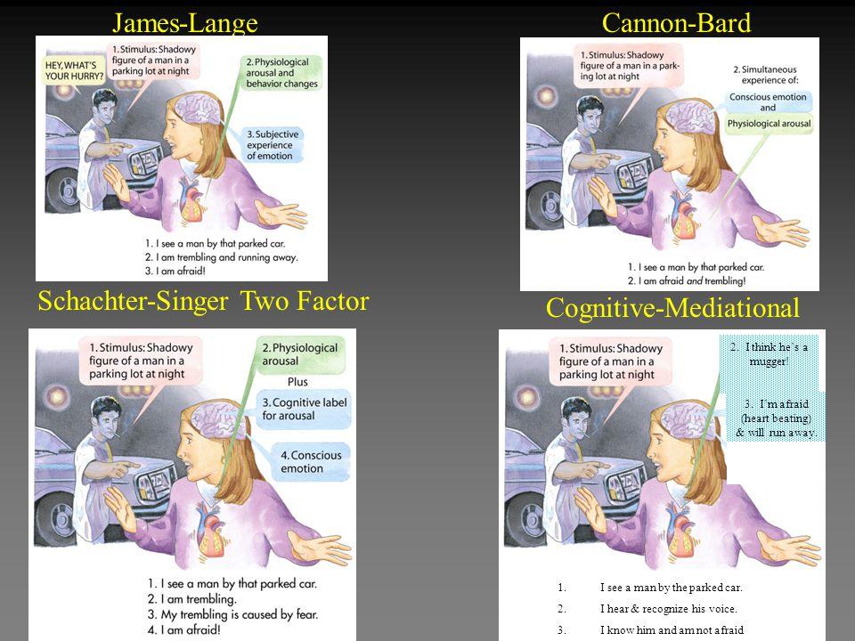 James-LangeCannon-Bard Schachter-Singer Two Factor Cognitive-Mediational 1.I see a man by the parked car.