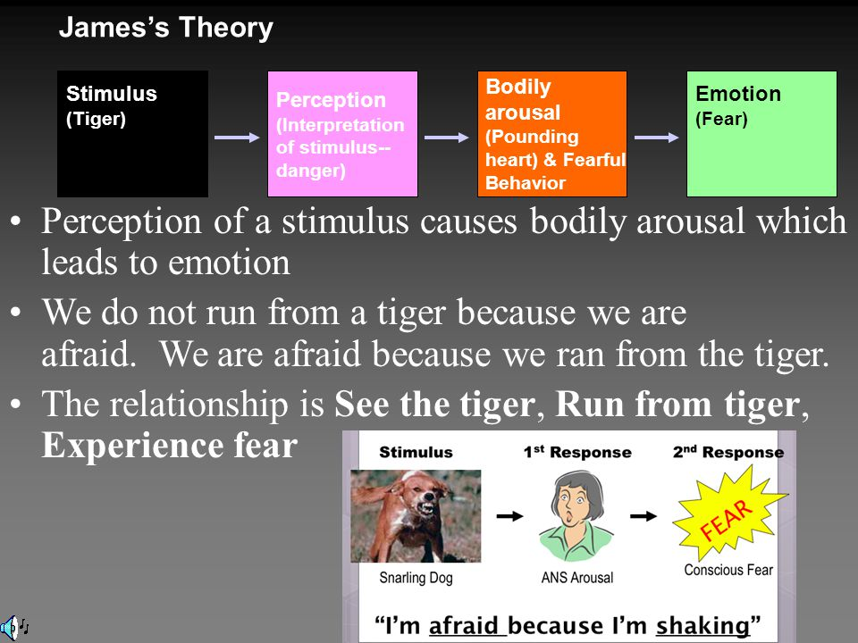 Perception of a stimulus causes bodily arousal which leads to emotion We do not run from a tiger because we are afraid.