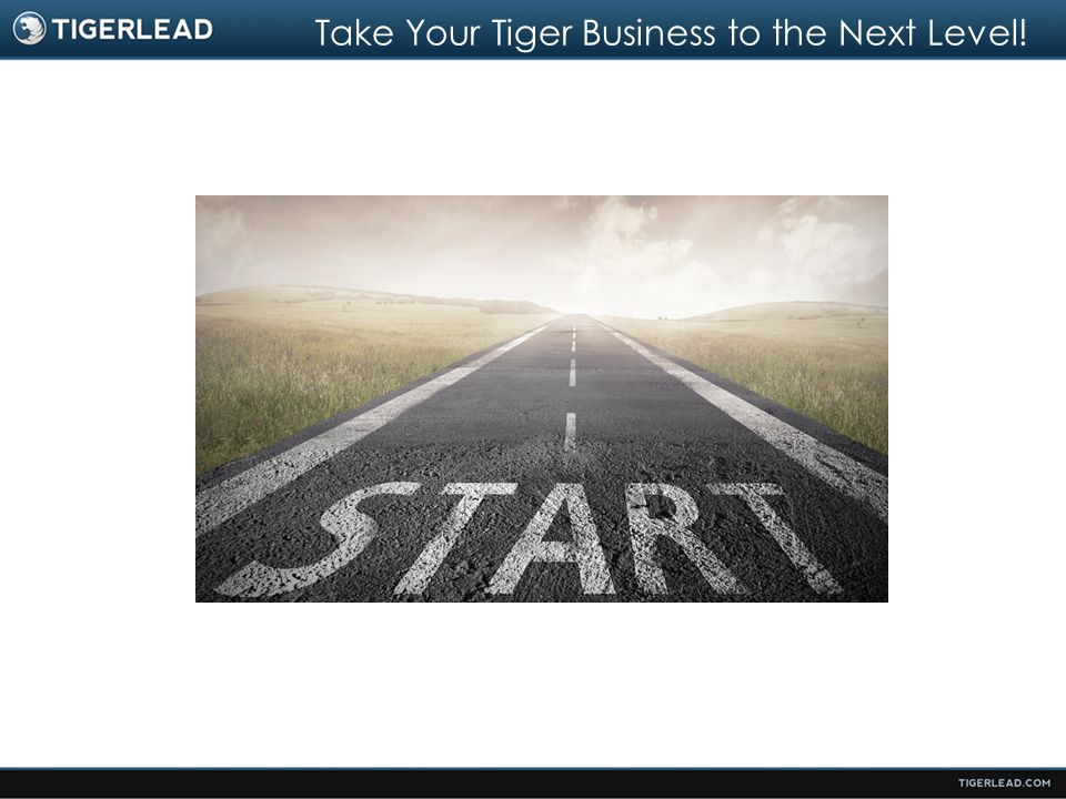Take Your Tiger Business to the Next Level!