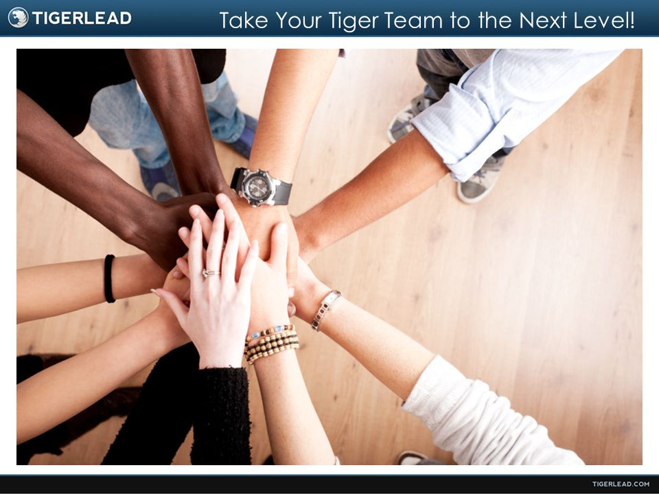 Take Your Tiger Team to the Next Level!