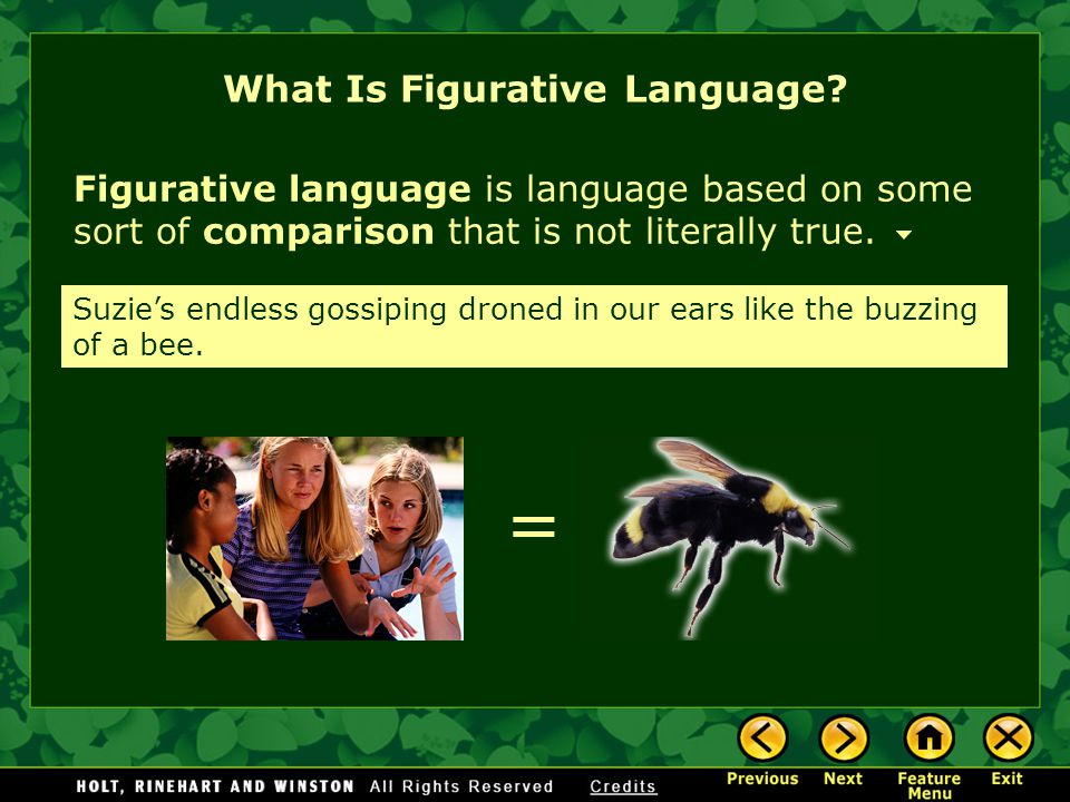 Figurative language is language based on some sort of comparison that is not literally true. = Suzie's endless gossiping droned in our ears like the b