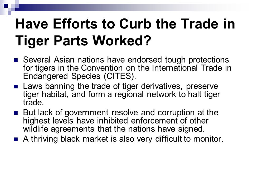 Have Efforts to Curb the Trade in Tiger Parts Worked? Several Asian nations have endorsed tough protections for tigers in the Convention on the Intern