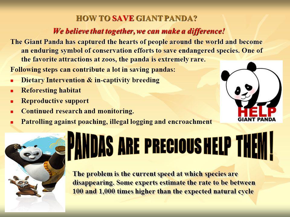 HOW TO SAVE GIANT PANDA. HOW TO SAVE GIANT PANDA.