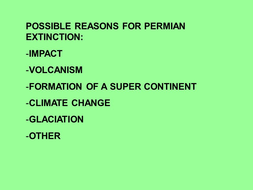 POSSIBLE REASONS FOR PERMIAN EXTINCTION: -IMPACT -VOLCANISM -FORMATION OF A SUPER CONTINENT -CLIMATE CHANGE -GLACIATION -OTHER