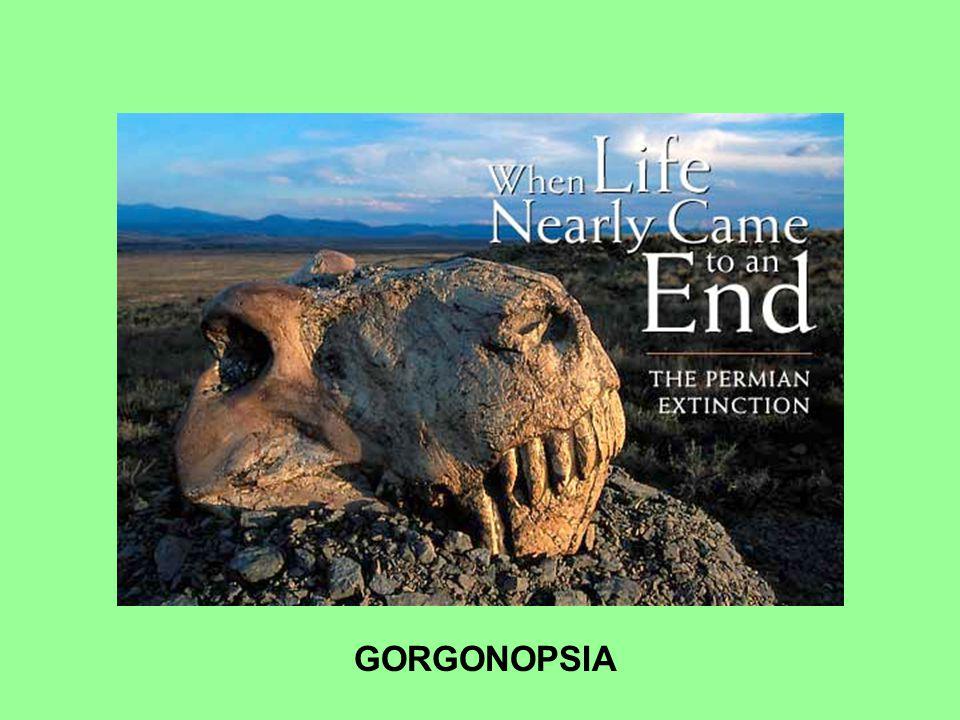 GORGONOPSIA