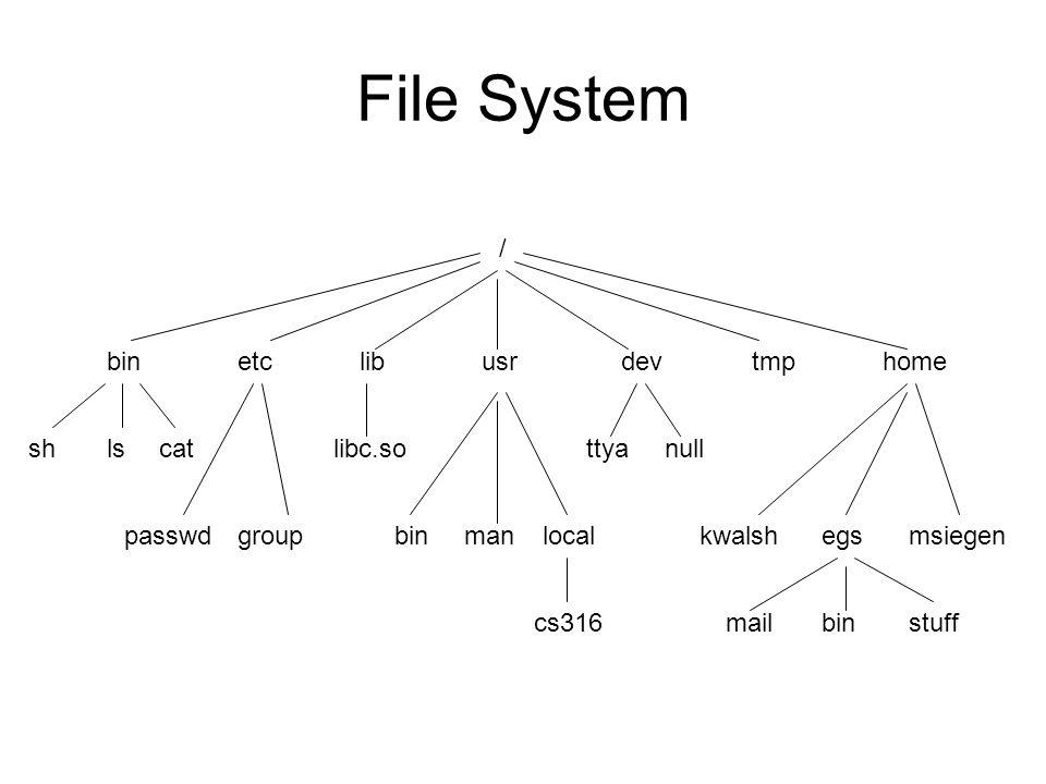 File System / binetclibusrdevtmphome shlscat passwdgroup libc.so binmanlocal cs316 ttyanull egsmsiegenkwalsh binmailstuff