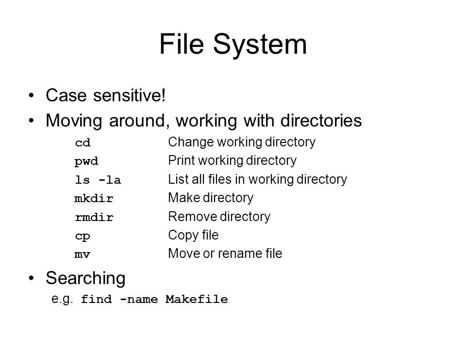 File System Case sensitive.