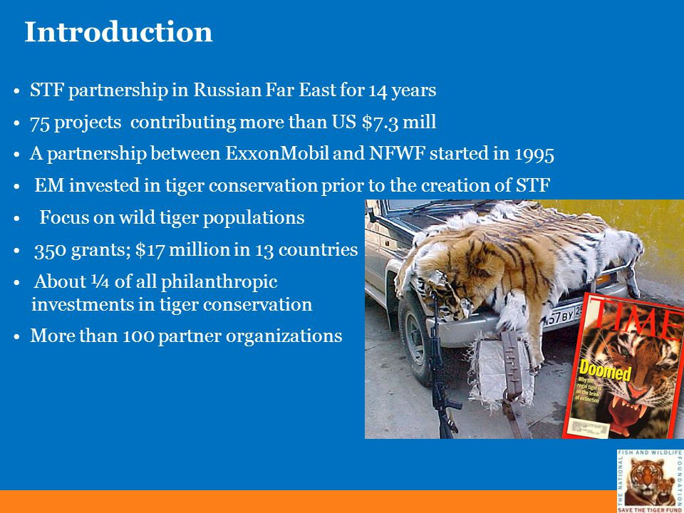 Introduction STF partnership in Russian Far East for 14 years 75 projects contributing more than US $7.3 mill A partnership between ExxonMobil and NFW