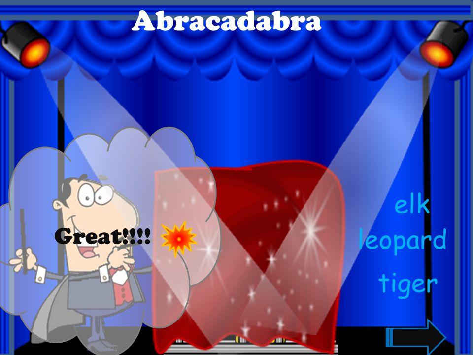 Abracadabra Great!!!! mouse pig turkey