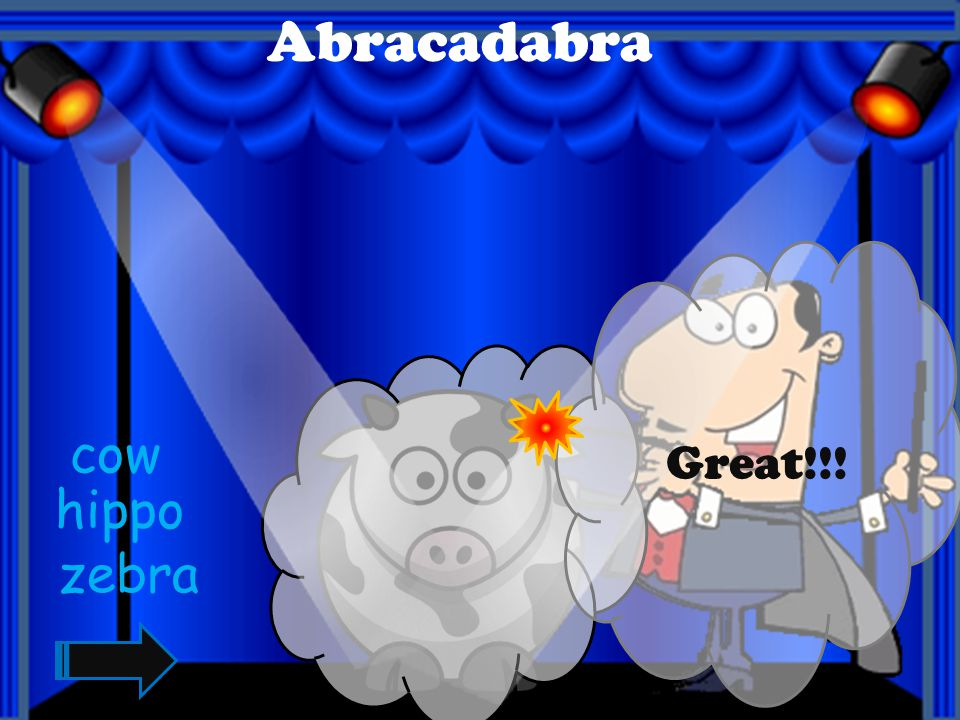 Great!!!! Abracadabra chicken cat dog
