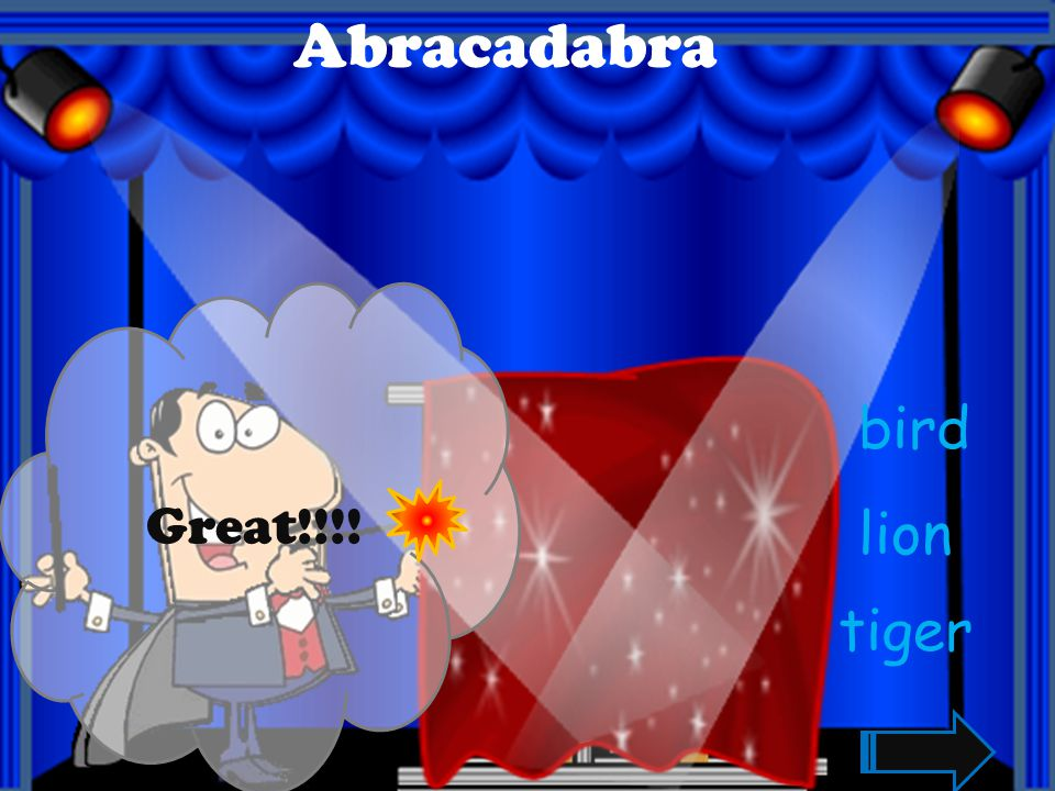 Abracadabra elephant lion monkey Great!!!!